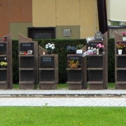 """Solis """"rose portes noires"""""""