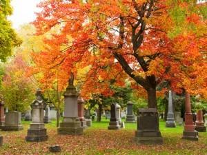 Comment les communes et collectivités devraient-elles gérer l'espace dans leurs cimetières ou espaces cinéraires ?